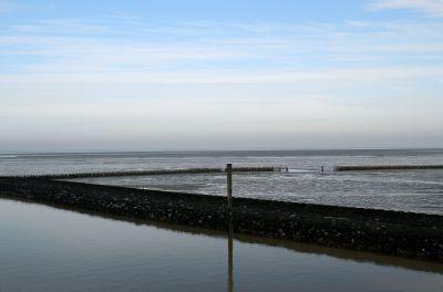 Seit 2009 Weltnaturerbe: Das Wattenmeer